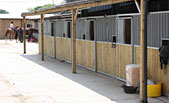 New livery stables